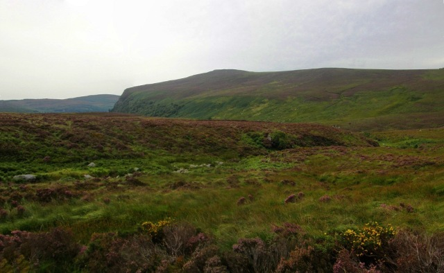 sally gap