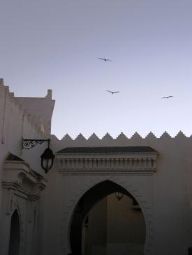 Palacio Al rasouni
